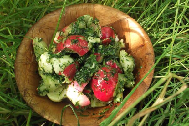 простой салат из редиски